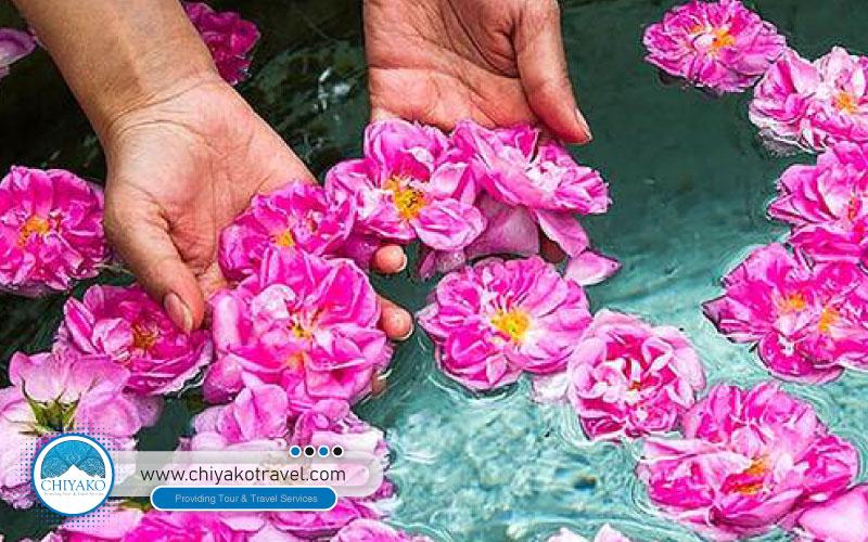 Rose water festival (Golabgiri)