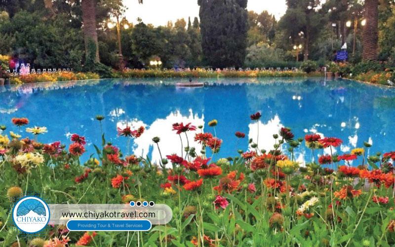 pool in Eram garden