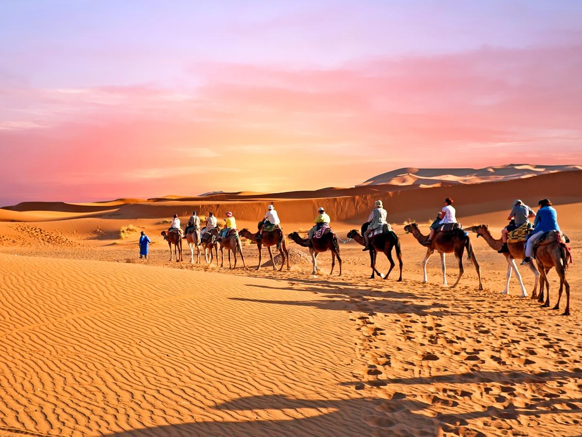 Camel trekking Tour in Central Desert of Iran