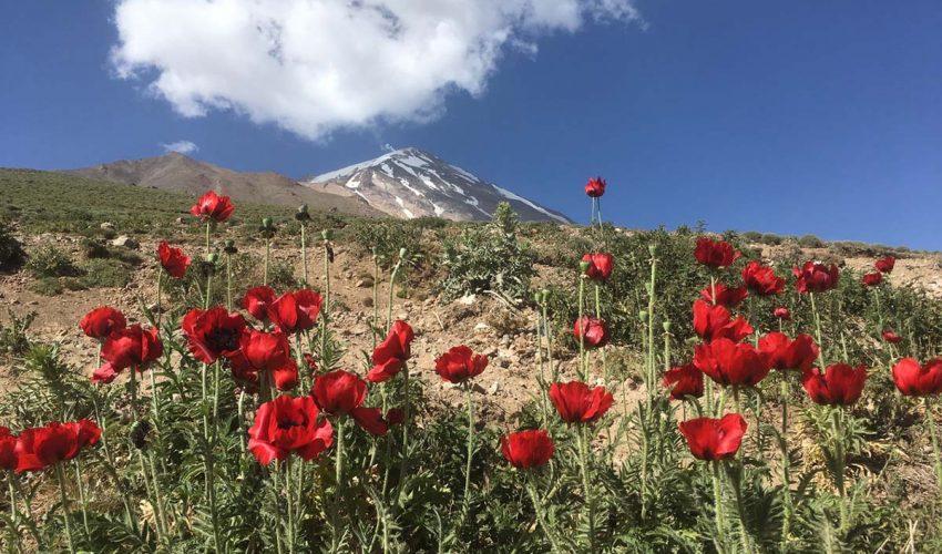 Climbing Mount Damavand 8-Day Tour